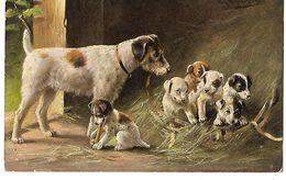 ILLUSTRATEUR MULLER  FAMILLE DE CHIENS GENRE TERRIER MAMAN ET 6 PETITS 1911 CPA 2 SCANS - Illustrateurs & Photographes