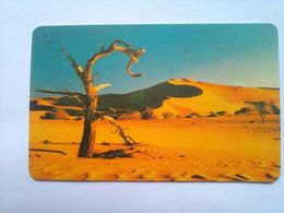Desert - Namibia