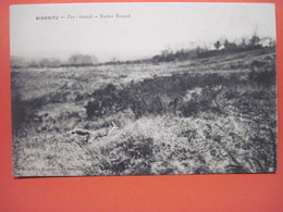 CPA  64 BIARRITZ Maitre Renard Fox Hounds  19.. T.B.E. - Biarritz