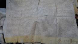 CHARLES SORLIN  (gorlin).docteur En Droit ,Bourgeois à LILLE. Parchemin : 50  X  31  Cm. 1573 - Documents Historiques