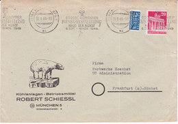 München , 1949, Mi 85wg ,+ 2 Berlin, Ours Blanc,( 18003/116) - Zona Anglo-Americana