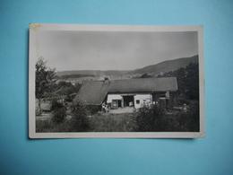 BELMONT  -  88  -  La Colonie De LAXOU  -  Vosges - Other Municipalities