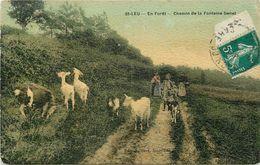 SAINT LEU - En Forêt, Chemin De La Fontaine Genet. - Saint Leu La Foret