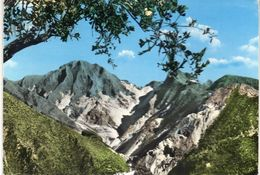 CARRARA ,  Cave  Di  Marmo - Carrara