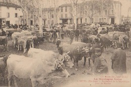 REVEL Boulevard De La Republique Jour De Marche - Revel