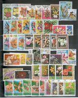 ORCHIDEES: Lot De 50 Timbres Différents - Orchidées