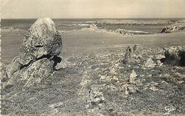 C-18-975 : ILE D'YEU.  POINTE DU CHATELET - Ile D'Yeu