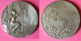 ARTHUS BERTRAND - Médaille En BRONZE Avec Poinçon - Femme Seins Nus - Art Nouveau - PILLET - 51 Grammes - Autres