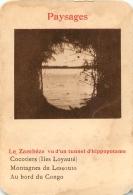 LE ZAMBEZE VU D'UN TUNNEL D'HIPPOPOTAME  PAYSAGES  CARTE FORMAT 11 X 7.50 CM DOS VIERGE - Cartes Postales