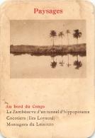 AU BORD DU CONGO  PAYSAGES  CARTE FORMAT 11 X 7.50 CM DOS VIERGE - Cartes Postales
