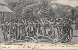 CPA Ivoire éléphant Congo Type Ethnic Afrique Noire Circulé - Frans-Kongo - Varia