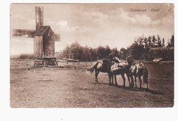 Saaremaa/ Ösel Windmill Windmühle 1928 OLD POSTCARD 2 Scans - Estonia