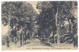 Cpa Grandrieu ( Lozère ) - La Promenade De L'Allée - Gandrieux Saint Amans