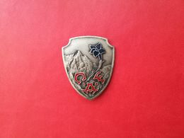 Pin Montagna C.A.F. - P547 - Pin's