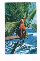 Tahitienne Sur Un Cocotier_cpM - Tahiti