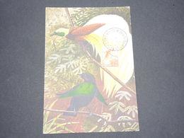 PAPOUASIE NOUVELLE GUINÉE - Carte Maximum Oiseaux - L 13315 - Papouasie-Nouvelle-Guinée