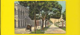 HABANA Paseo Del Prado Prado Promenade (N° 23) Cuba - Cuba