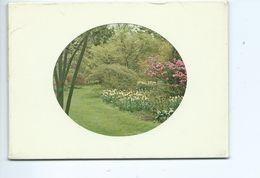 Kalmthout Arboretum ( 6 Kaarten  ) - Kalmthout