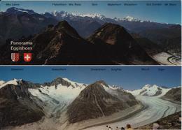 Panorama Eggishorn - Blick Auf Die Walliseralpen Und Den Grossen Aletschgletscher Mit Jungfraugebiet - VS Valais