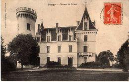 SOUGY - CHÂTEAU DE BATEAU - France