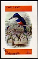 Nagaland Martin Pêcheur Kingfisher (A51-238b) - Sparrows