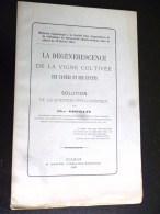 LA DEGENERESCENCE DE LA VIGNE CULTIVEE CHR. OBERLIN MALADIE DE LA VIGNE COLMAR 1881 AGRICULTURE VENDANGE VIGNERON ALCOOL - Livres, BD, Revues