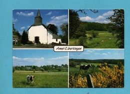 Belgique Province De Liege Ambleve Amel Eibertingen Carte Multivues - Amblève - Amel