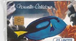 TELECARTE 25 UNITES...NOUVELLE CALEDONIE - New Caledonia