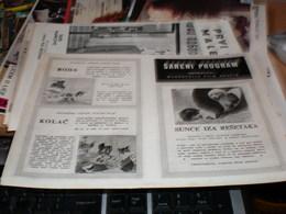 Sareni Program - Posters