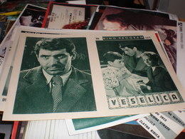 Veselica - Posters