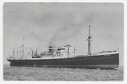 """Holland-America Line - M.V. """"Dalerdijk"""" - Steamers"""