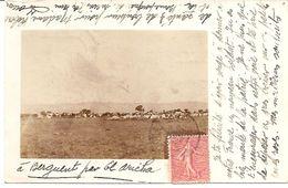 Carte Photo Militaire - Sud Oranais /Maroc Berguent El Aricha 1906 - M. ROBERT Rue Vulpian Paris 13e - Reggimenti
