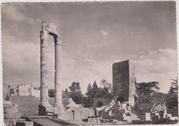 13,BOUCHES DU RHONE,ARLES,CARTE PHOTO - Arles