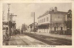 RIS ORANGIS - La Gare Prise Du Quai. - Bahnhöfe Ohne Züge