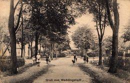 CPA CP Weddingstedt In Dithmarschen, Straßenpartie Im Ort - Gruß Aus Weddingstedt - Andere