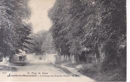 Sasselot Le Manconduit L'Avenue Des Grandes Dalles  1904 - Le Havre