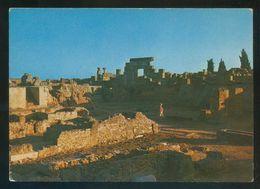 Túnez. Carthage. *Coucher De Soleil...* Ed. Reguioui - Chamam Nº C77. Nueva. - Túnez