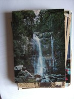 Australië Australia NSW Upper Minnamurra Falls - Australië