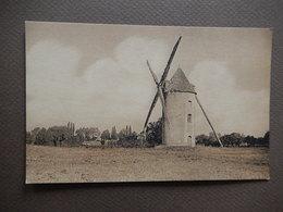 TRES RARE - LA VIENNE - DANS LA PLAINE - QUELQUES DERNIERS MOULINS A VENT - R12066 - Windmills