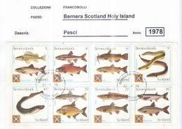 U.K. 1974 Bernera   Scotia Isola Pesci   Scott.S/s Block+ See Scans Usati - Emissione Locali