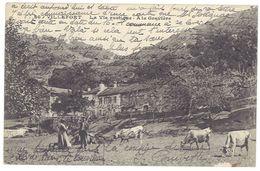 Cpa Villefort - La Vie Rustique - A La Gravière  ( Vaches ) - Villefort