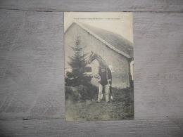 Camp De Beverloo - Leopoldsburg - Bourg - Léopold   :  L'ami Du Cavalier - Leopoldsburg (Kamp Van Beverloo)