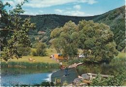 België : Vallee De L'our. Campingleven En Visvangst. - Belgique