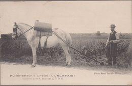 """33-ST-GIRONS-D'AIGUEVIVES-Pulvérisateur à Cheval """"LE BLAYAIS"""" Système M.A. BOYER Animé  (CARTE RARE) - Autres Communes"""