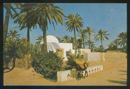 Túnez. Gabes. *L'Oasis* Ed. Tanit Nº 592. Nueva. - Túnez