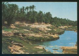 Túnez. Gabes. *L'Oasis* Ed. Tanit Nº 89bis. Circulada 1975. - Túnez