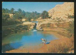 Túnez. Gabes. *L'Oasis* Ed. Carthage Nº Rs 17. Nueva. - Túnez