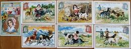 LOT 7 IMAGES PUBLICITAIRES VERITABLE EXTRAIT DE VIANDE LIEBIG - Liebig