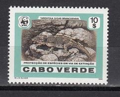 Cape Verde - WWF / LIZARD 1986 MNH - Cape Verde