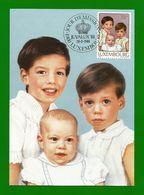 Luxemburg  1988 Mi.Nr. 1197 , Les Princes Guillaume - Felix Et Louis - Maximum Card - Jour D'Emission 29.3.1988 - Cartes Maximum